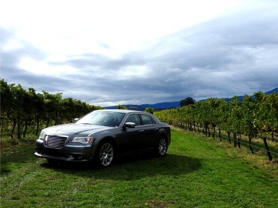 Healesville, أستراليا: Private Winery Tours In Big Grape's Luxury Sedan