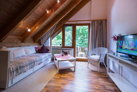 Hotels In Allensbach Deutschland