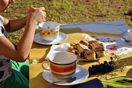 Montecastelli Pisano, Italië: La squisita colazione praparata da Tiziana e servita nel giardino