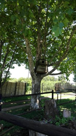 Hillcrest, South Africa: Winsome View Animal Farm & Bistro