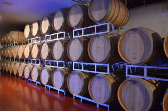 Montalcino, Italy: visiting the cellar