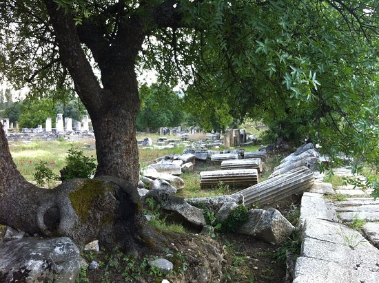 Turgut Lagina  antik harabeler