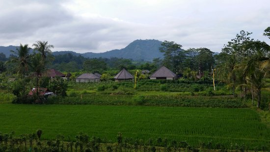 Sidemen, Indonesia: 20171113_082440_large.jpg