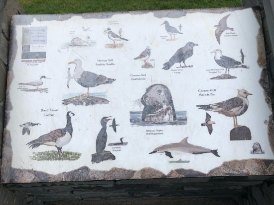 Greystones, İrlanda: photo5.jpg