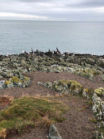 Greystones, İrlanda: photo6.jpg