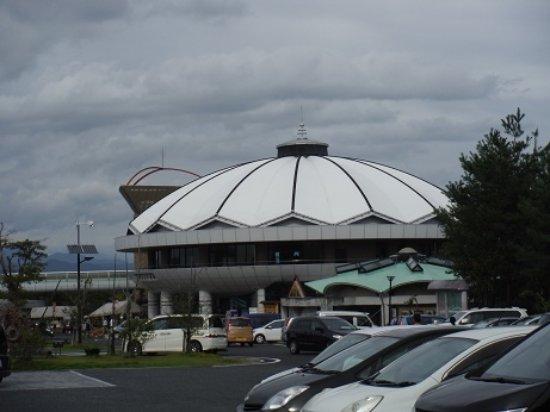 Toki Photo