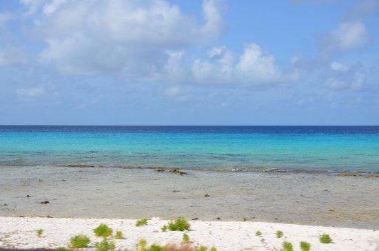 Kralendijk, Bonaire: Bonaire beach