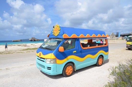 Kralendijk, Bonaire: super bus tour around Bonaire Island