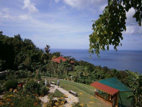 Vue du snack vers la Baie de Deshaies, Île de Montserrat au loin.