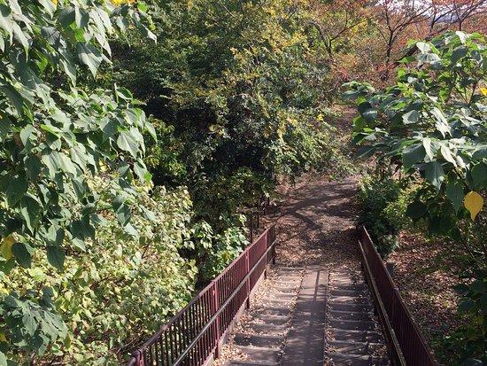 Yagawa Ryokuchi Park