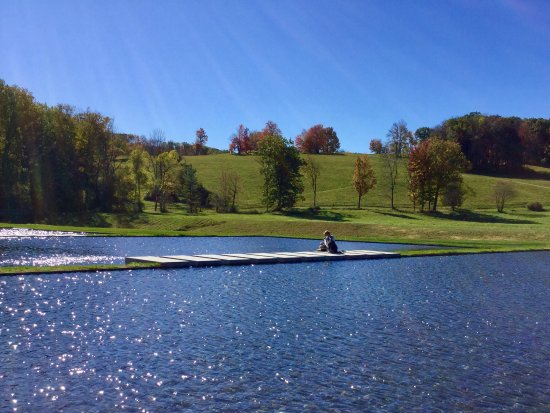 Williamstown, MA: The Clark water feature and grounds