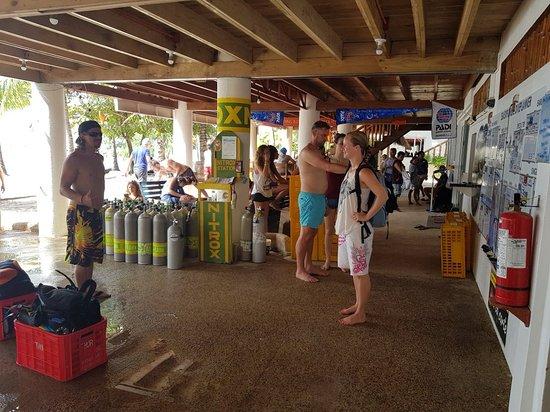 Ocean Vida Beach & Dive Resort: 20171115_092811_large.jpg