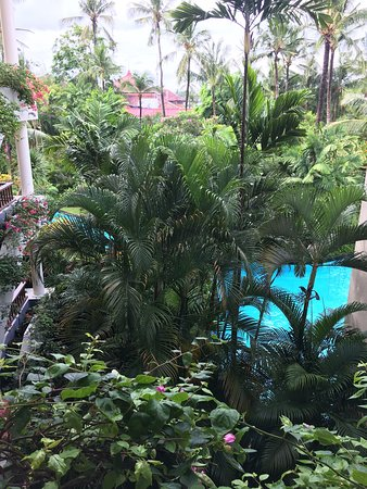 nusa dua gay dating site Denpasar departure transfer: hotel to airport travel from kuta, sanur or nusa dua, legian and seminyak to denpasar airport transfer services are available 24 hours a day, 7 days a week.