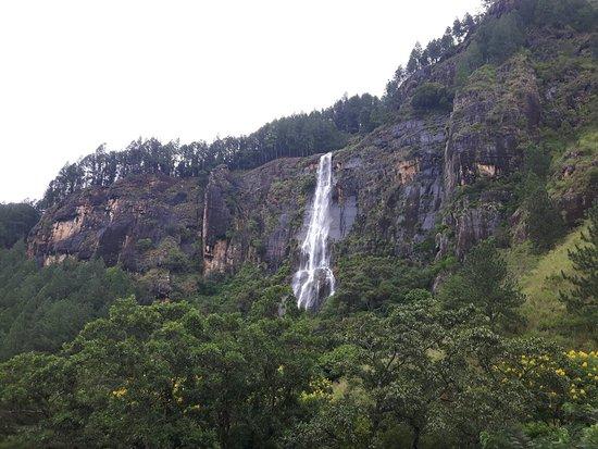 Bambarakanda Falls : 20171107_110547_large.jpg
