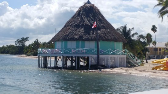 Turneffe Island, Belize: Bar and gift shop area