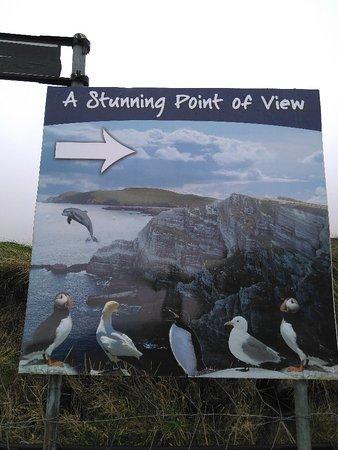 Portmagee, Irlanda: IMG_20171118_120825_940_large.jpg