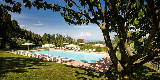 Gambassi Terme, Italy: our pool surrounded by green nature