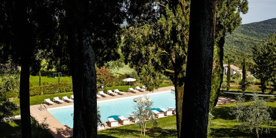 Gambassi Terme, Italia: our pool surrounded by green nature