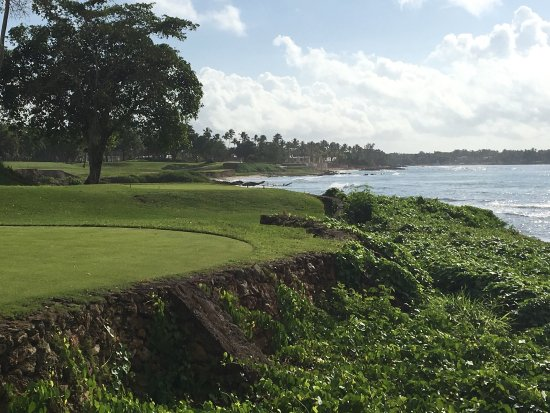 Amazing golf!