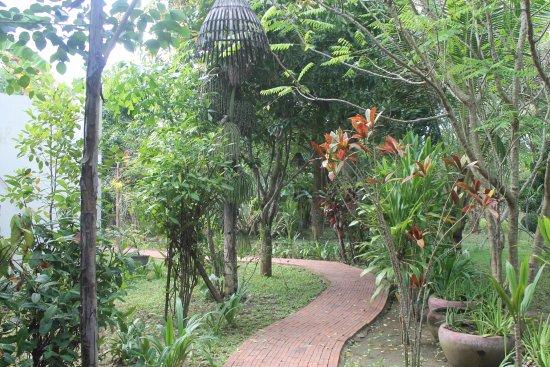 Battambang Resort: camere immerse nella natura...