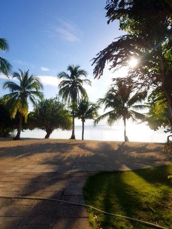 Dos Palmas Island Resort & Spa : 20171105_161531_large.jpg