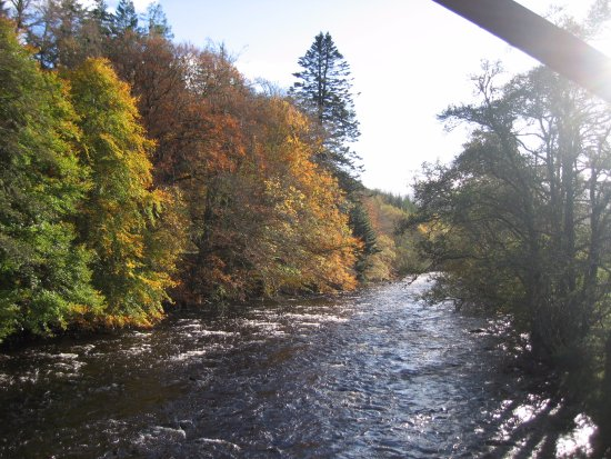 Ullapool, UK: RIVERBANK OPPOSITE LAEL FOREST