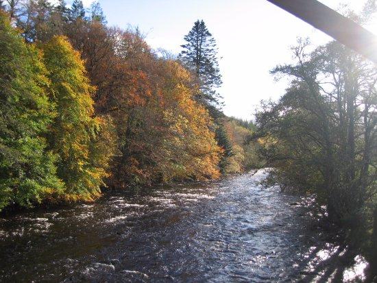 אולפול, UK: RIVERBANK OPPOSITE LAEL FOREST