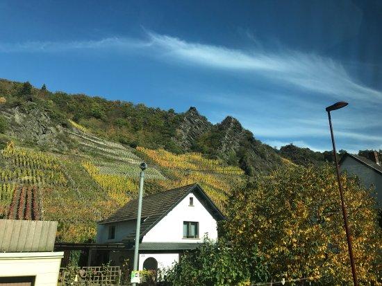 Mayschoss, Germany: photo8.jpg