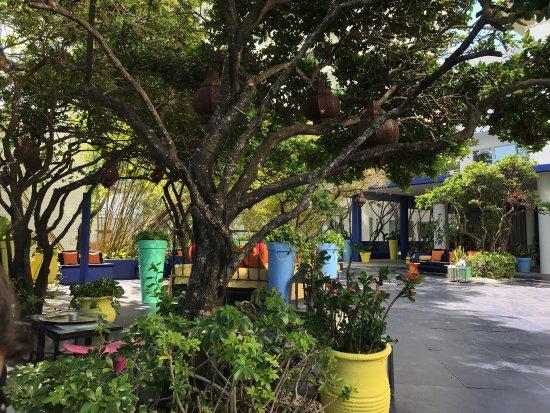 Shore Club South Beach Hotel: photo0.jpg