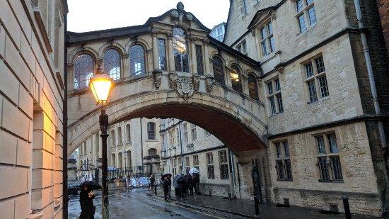 Oxford Walking Tours : IMG_20171118_155658_large.jpg