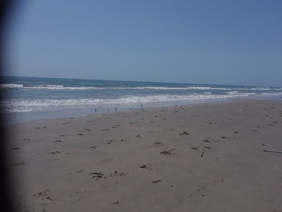 Padre Island National Seashore: 20170809_121921_large.jpg