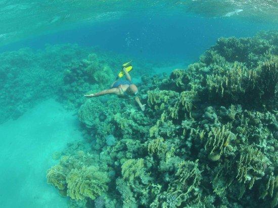 Dahab Divers South Sinai Hotel & Dive center: Sinai Trip #2  (319 of 445)_large.jpg