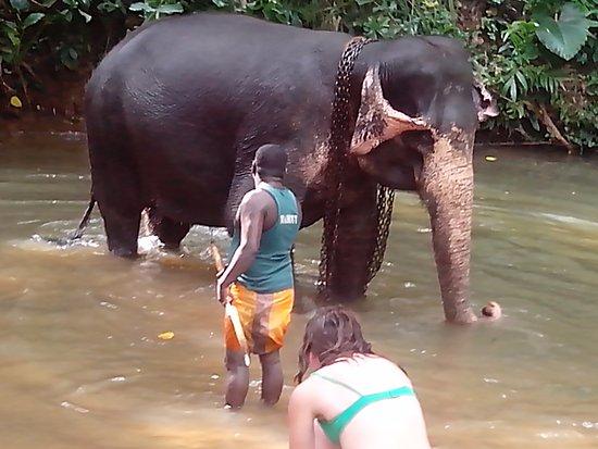Кегалле, Шри-Ланка: Baden ist gut
