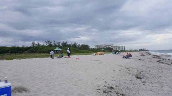 Resultado de imagen para Playa Spanish River Park