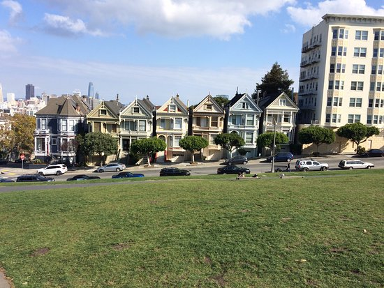 The painted ladies from Alamo square
