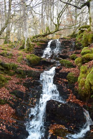 Aberfeldy, UK: The waterfalls are fast and roaring