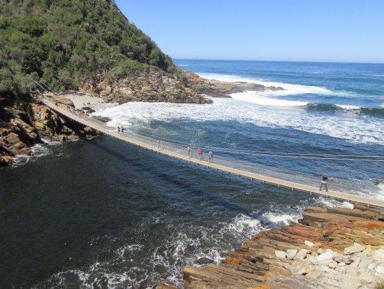 Tsitsikamma National Park, Νότια Αφρική: Hanging bridge