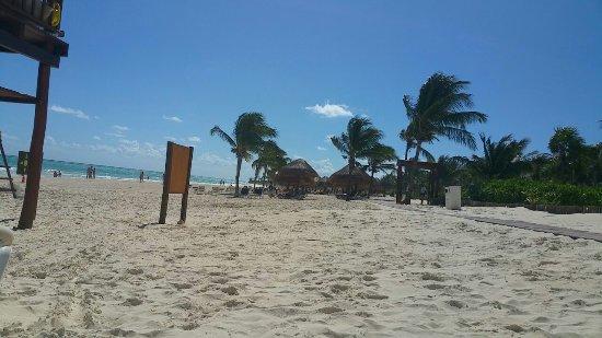 Secrets Maroma Beach Riviera Cancun: orca-image-1510765422798_large.jpg