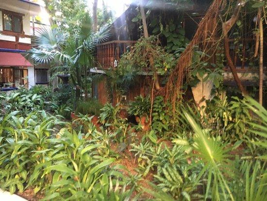 Eco-Hotel El Rey Del Caribe: photo0.jpg