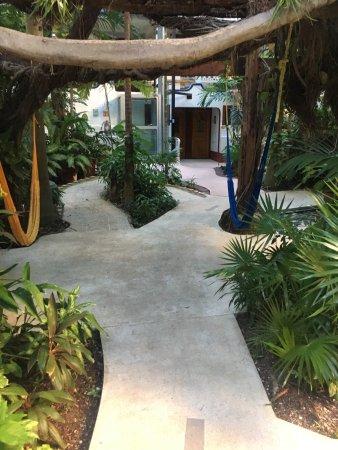 Eco-Hotel El Rey Del Caribe: photo1.jpg
