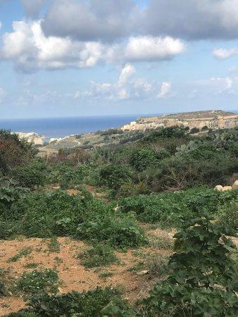 Victoria, Malta: photo3.jpg