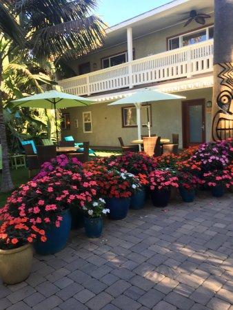Ocean Palms Beach Resort: photo1.jpg
