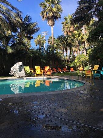 Ocean Palms Beach Resort: photo2.jpg