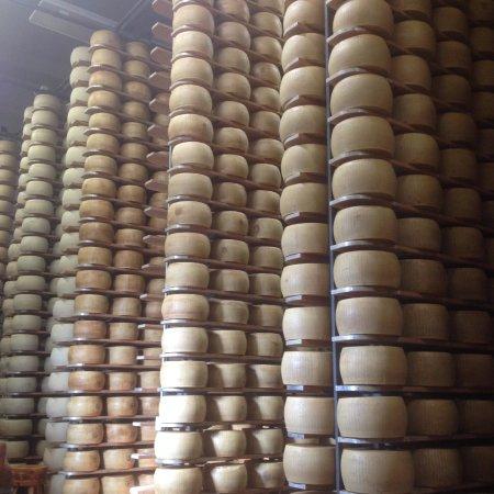 Castelnovo di Sotto, Italia: Scaffali lunghi, alti ricchi di forme in diverse fasi di maturazione.