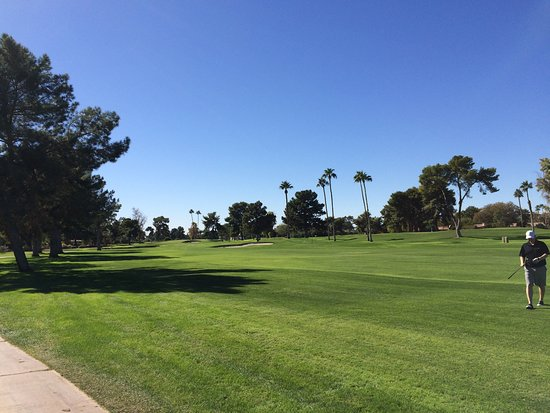 Litchfield Park, AZ: 6th Fairway Gold Course Wigwam