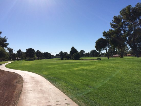 Litchfield Park, AZ: 13th Fairway Gold Course Wigwam Golf Resort