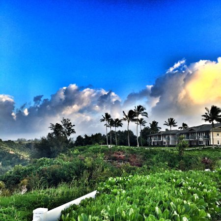 Westin Princeville Ocean Resort Villas: Amazing cliff side views!