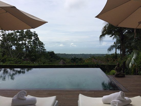 Oxygen Jungle Villas: View while eating breakfast