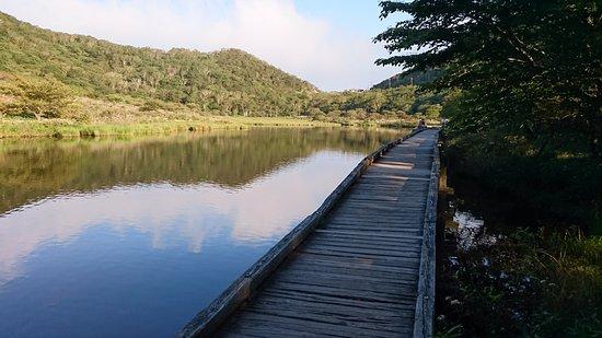 Kakumambuchi