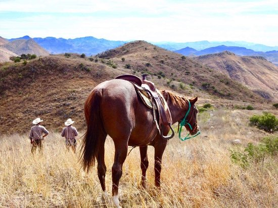 Sonora, Mexico: Regular breaks on the trail rides to take in the exceptional scenary and have a rest.